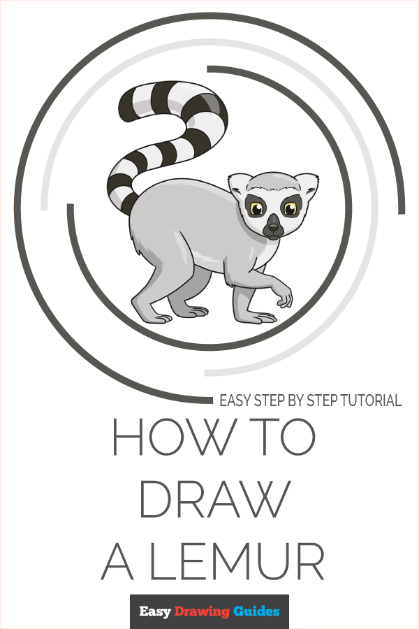 how to draw a lemur pinterest image