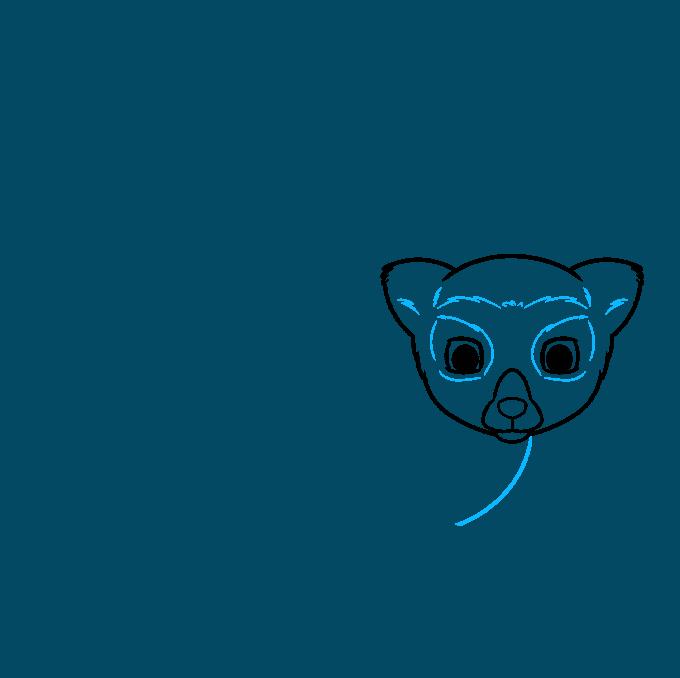 lemur step-by-step drawing tutorial: step 03
