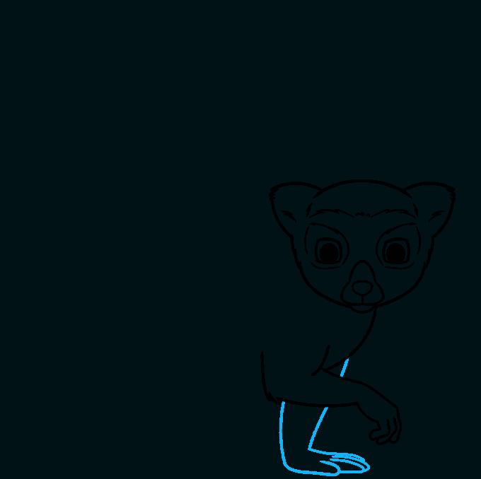 lemur step-by-step drawing tutorial: step 05