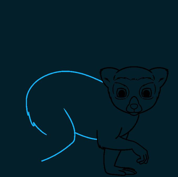 lemur step-by-step drawing tutorial: step 06