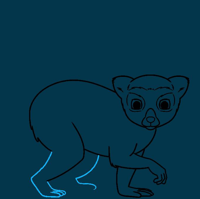 lemur step-by-step drawing tutorial: step 07