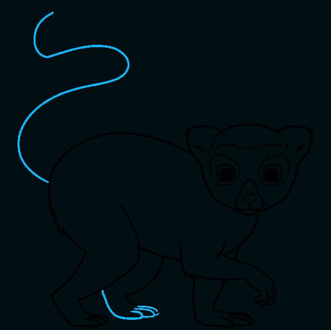 lemur step-by-step drawing tutorial: step 08