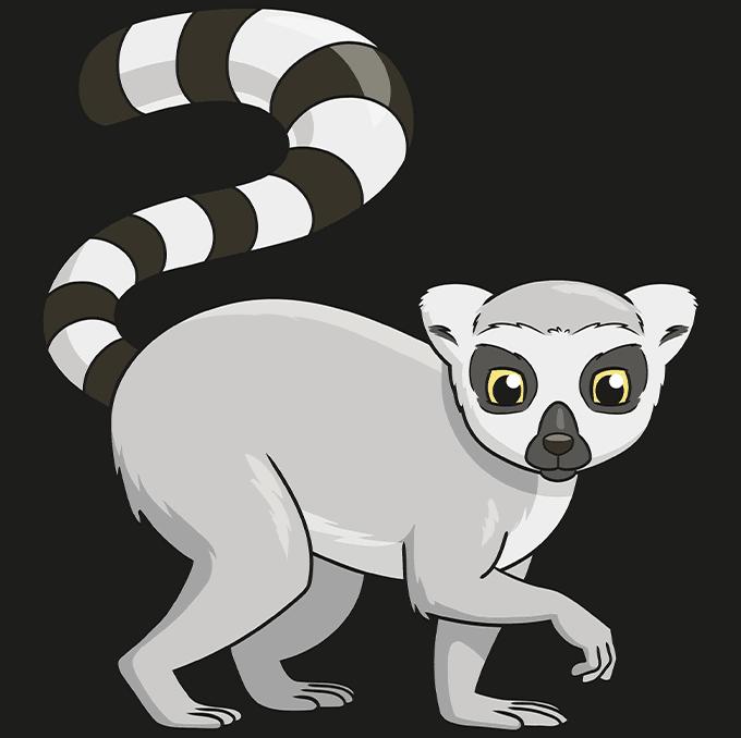 lemur step-by-step drawing tutorial: step 10