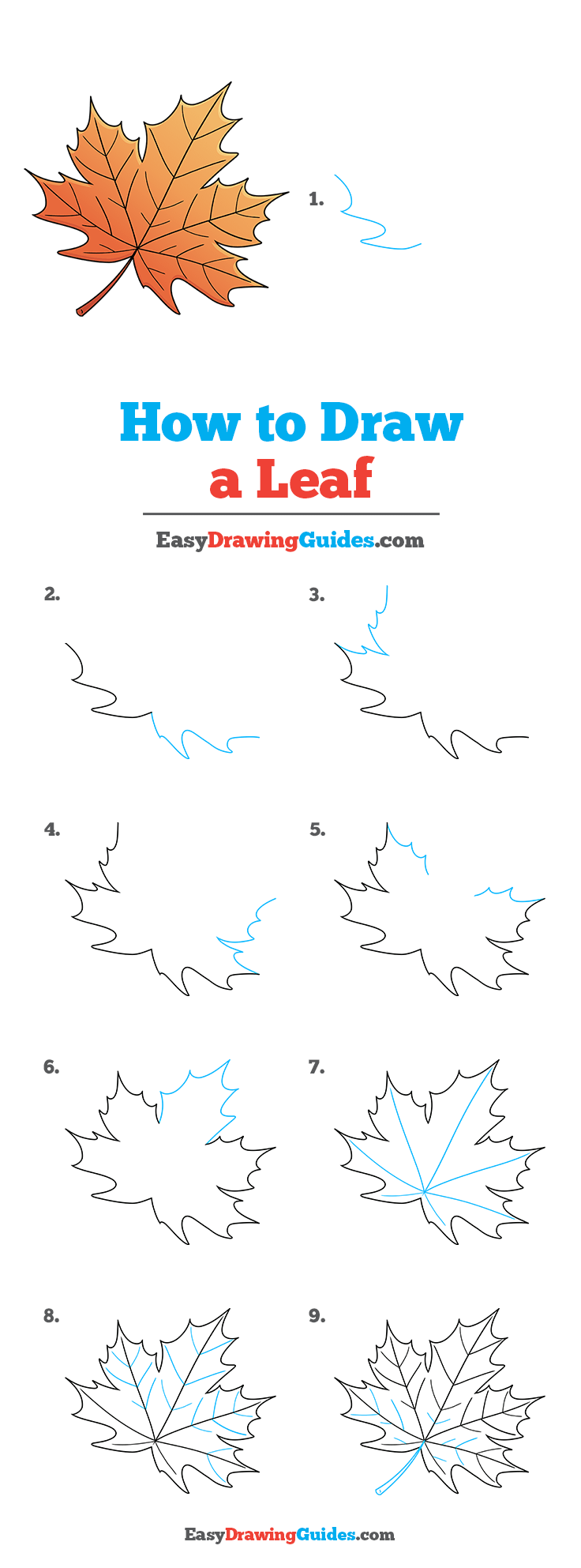 how to draw a leaf step by step tutorial image