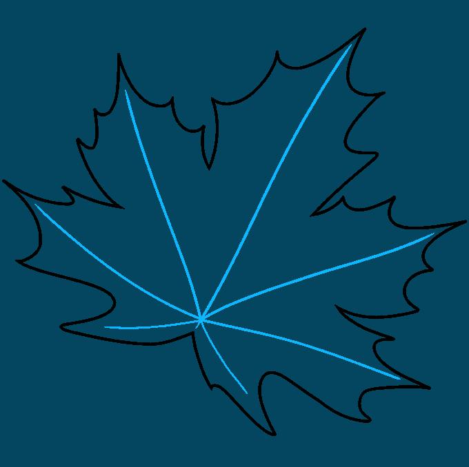 Leaf step-by-step drawing tutorial: step 07