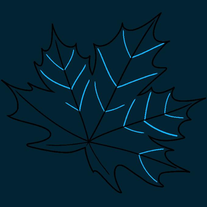 Leaf step-by-step drawing tutorial: step 08
