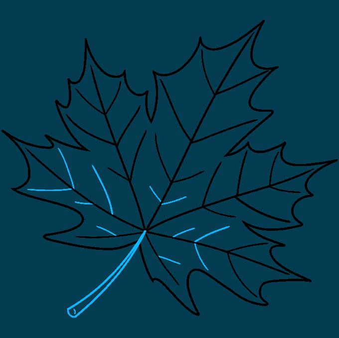 Leaf step-by-step drawing tutorial: step 09