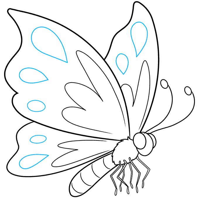 cartoon butterfly step-by-step drawing tutorial: step 09