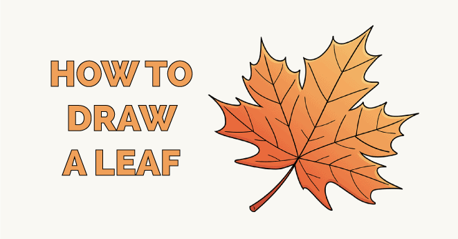 how to draw a leaf featured image
