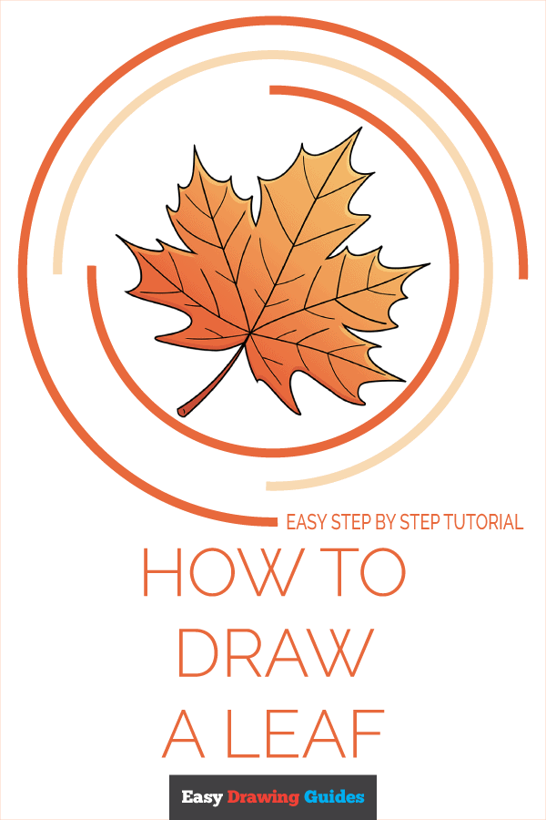 how to draw a leaf pinterest image